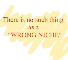 Blogging for dummies - choosing a niche