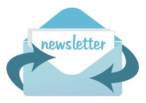 make money with newsletter